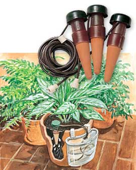 Various Aspects You Should To Know About Automatic Plant Watering ...